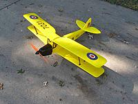 Name: Tiger Moth.JPG