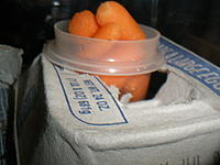 Name: P6230060.jpg