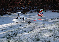 Name: Islander in the snow.jpg