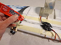 Name: DSC05881.jpg