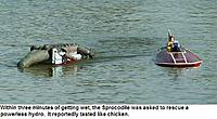 Name: SprocodileRescue9-12aa.jpg