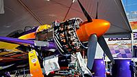 Name: Rare Bear 2015-002.jpg