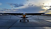 Name: Piper L-4 GrassHopper 001.jpg