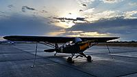 Name: Piper L-4 GrassHopper 003.jpg
