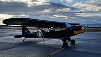 Name: Piper L-4 GrassHopper 004.jpg