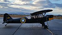 Name: Piper L-4 GrassHopper 005.jpg