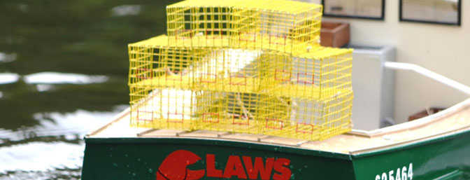 Make Your Own Scale Wire  Lobster Traps
