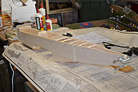 Name: 037 Tail closed.jpg