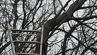 Name: 20160326_151122.jpg
