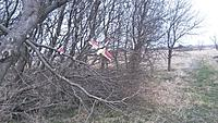 Name: 20160326_151904.jpg