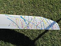 Name: 032.jpg Views: 81 Size: 322.1 KB Description: Thrown paint wing art.