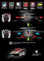 Name: xc3NO.jpg