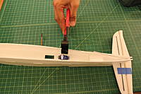 Name: IMG_3785.jpg
