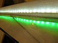 Name: P1010101.jpg