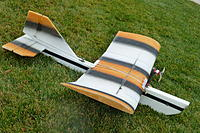 Name: P1020702.jpg