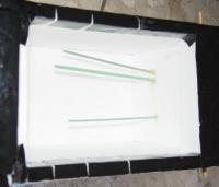 Name: DSC08147.jpg