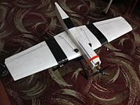 Name: Bobtail Plank 1.jpg