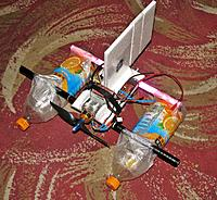 Name: Snow Skitter 1.jpg