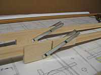 Name: IMG_4806.jpg