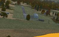 Name: tree.jpg