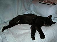 Name: Picture 094.jpg