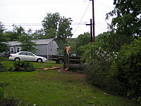 Name: tree down 013.JPG