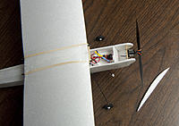 Name: _IGP6706.jpg