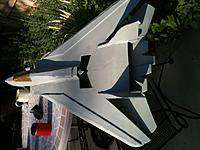Name: New Tomcat dorsal.jpg