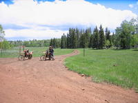 Name: pets 161.jpg