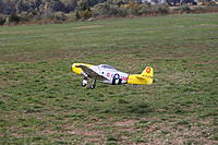 Name: soccer and mustang 061.jpg
