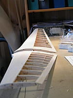 Name: 2012_11130001.jpg