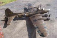 Name: 100_6950.jpg