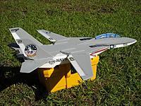 Name: Maybz F14 Foamy.jpg Views: 108 Size: 124.4 KB Description: Profile F14 Swing Wing 6mm Foamy