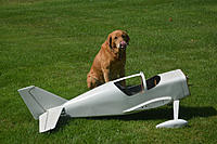 Name: Glasair 4.jpg