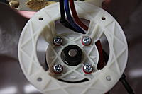 Name: IMG_7731.jpg