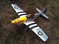 Name: Mustang 1 web.jpg