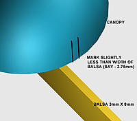 Name: canopy-CUT.jpg