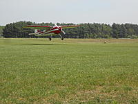 Name: DSCN3774.jpg