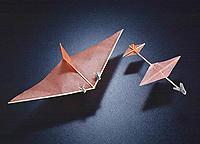 Name: houseflies-airplane.jpg Views: 14 Size: 36.3 KB Description: