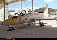 Name: uae339.jpg
