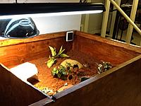 Name: image-1858f6f8.jpg