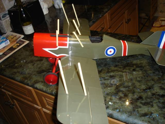 The struts attached, just waiting for the upper wing.