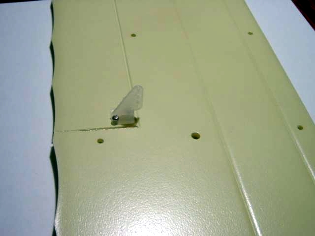 Name: bottomwing1.jpg