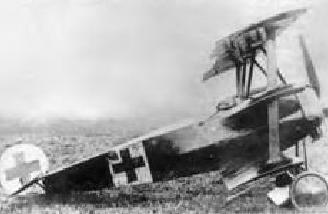 Richthofen got 3 kills in this plane. It survived the war but was lost in storage in WWII.