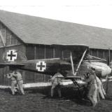 An Albatros being moved on the ground