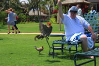 Name: Hawaiii 2008 & Jeff Grad-188.jpg