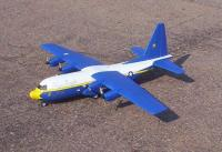Name: c-130 26 Fat-2nd-crop3-70%.JPG