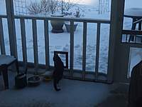 Name: DSCF1289.jpg