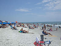 Name: DSCF1253_1.jpg