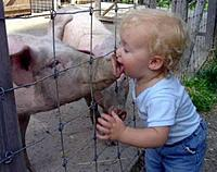 Name: kid_pig_kiss.jpg